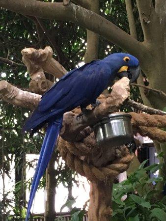 National Aviary: photo2.jpg