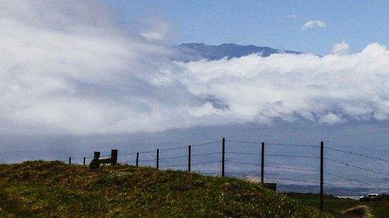 Hawi, HI: 250号線からマウナケア山(雲がなければ・・・・)