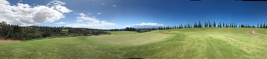 Kapalua Plantation Course: photo4.jpg