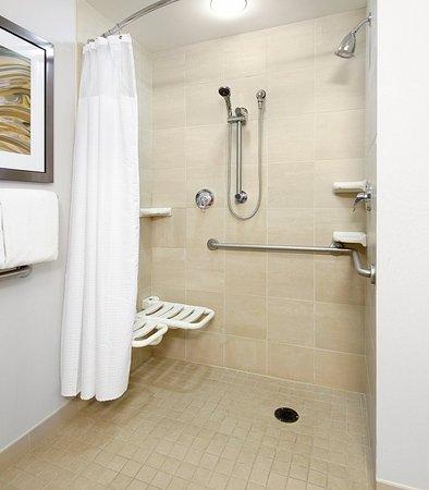 Greensburg, Pennsylvanie : Accessible Bathroom - Roll-In Shower