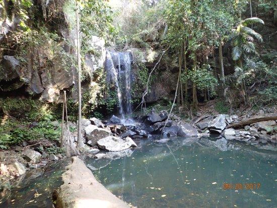 Tamborine Mountain, Australia: nice falls picture