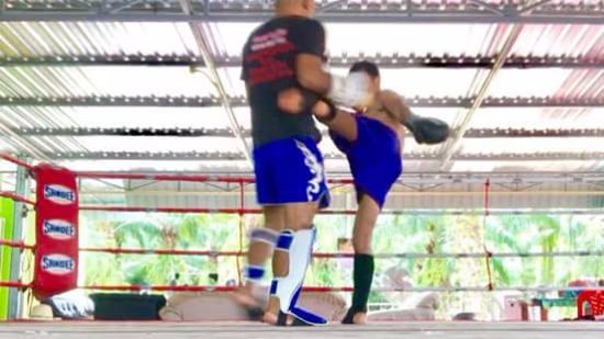 ‪Honour Muay Thai‬