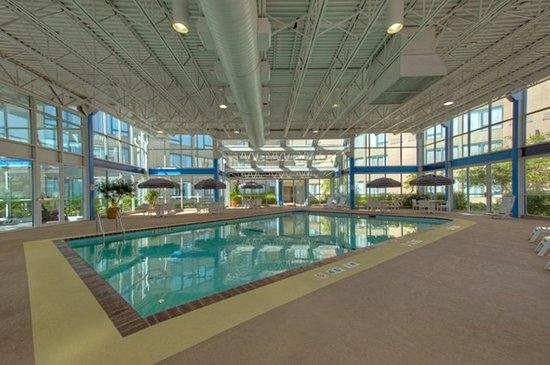 Holiday Inn Chicago Elk Grove: Swimming Pool