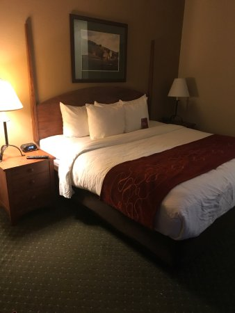 Comfort Suites Milwaukee Airport: photo1.jpg