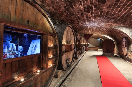 Full-day Wine Tour in Côtes de...