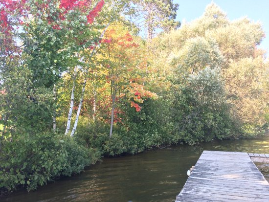Eagle River, WI: Fall colors beginning to show from a dock vantage point.