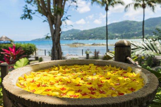 Bel Ombre, Seychelles: Spa Details