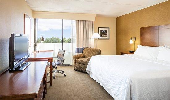Schiller Park, IL: King Guestroom