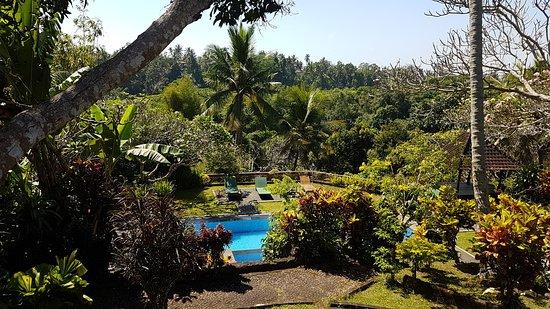Taman Indrakila: 20170914_101226_large.jpg