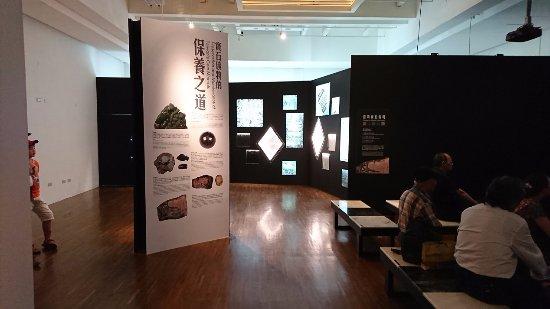 National Taiwan Museum: 展示物