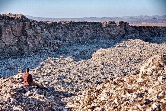 Desierto Nativo