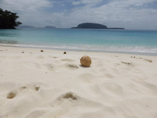 Champagne Beach: Coconut drink goes well with champagne (beach)