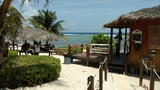 Bodden Town, جراند كايمان: Seating with a view at the Grape Tree Cafe