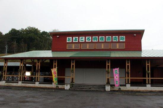 Toyokoro-cho
