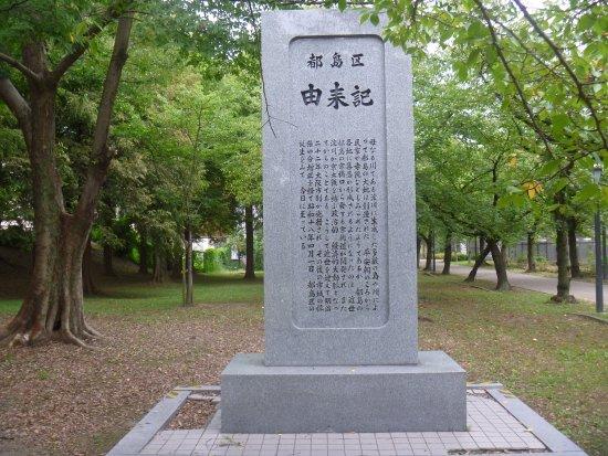 Miyakojima Origin