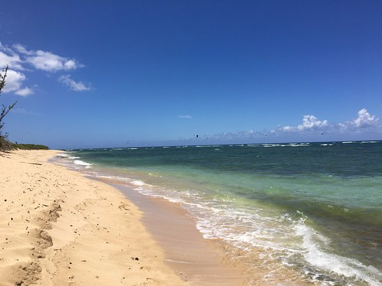 Waialua, Havaí: la spiaggia a ovest del posteggio