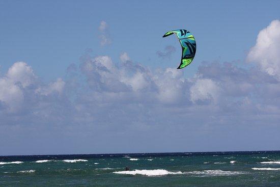 Waialua, HI: kitesurf