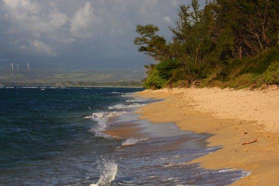 Waialua, HI: la spiaggia a est rispetto al posteggio