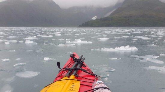 Kayak Adventures Worldwide: View