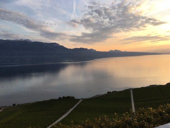 Chexbres, İsviçre: view