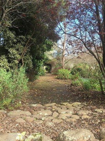 Potters Croft Garden: Beautiful garden even in early spring