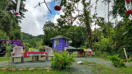 Trinidad and Tobago: The park little booth