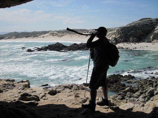 Overberg District, Sudáfrica: Blowing a kelp horn, quickly made by our Guide, Christoff. A Strandloper vuvuzela