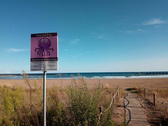 Platges de Cunit: cala d l pop