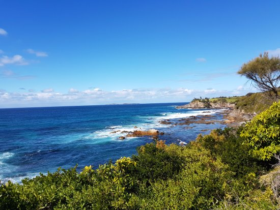 Narooma, ออสเตรเลีย: View from the walkway - Bar Rock Lookout