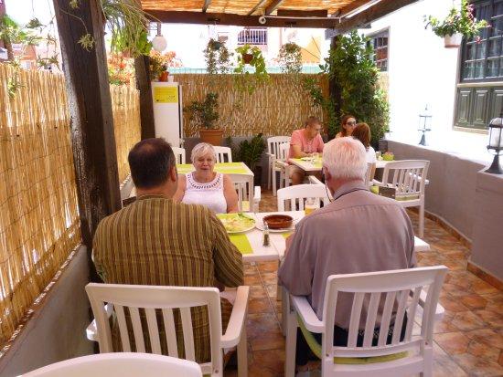 imagen Green Gecko Tenerife en Guía de Isora