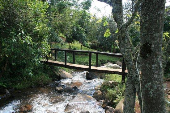 Sabie, Sydafrika: Bridge over the mountain stream