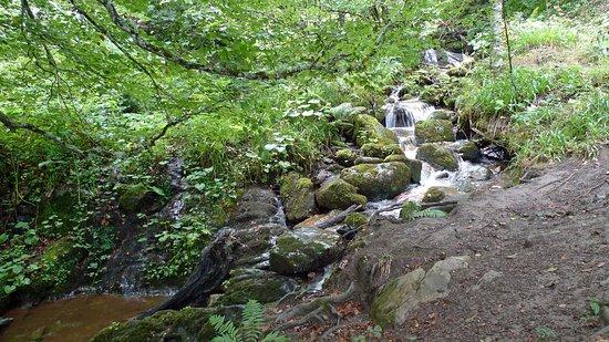 Муниципалитет Теверга, Испания: På vej op til Xiblu vandfaldet
