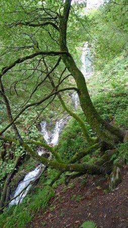 Teverga, España: Xiblu vandfaldet