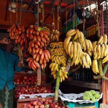 Chowara, India: IMG_20170920_222804_375_large.jpg