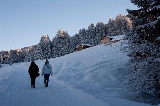 Грийон, Швейцария: Belle randonnée hivernale