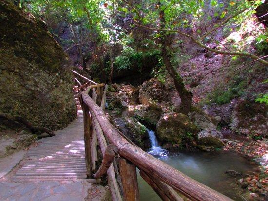 Πεταλούδες, Ελλάδα: Lower trail