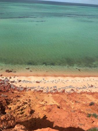 Denham, Australia: A delightful day out