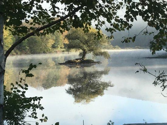 Halcottsville, NY: photo0.jpg