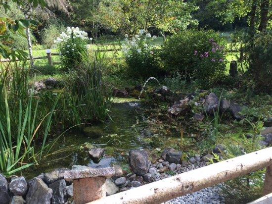 Altenau, Γερμανία: Kleiner Teich im Biergarten