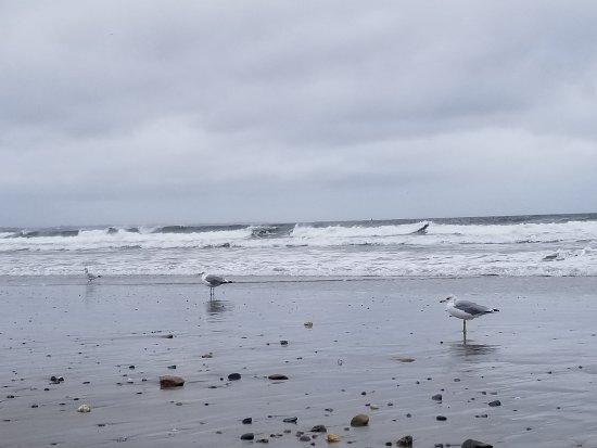 Narragansett Beach: 20170922_134459_large.jpg