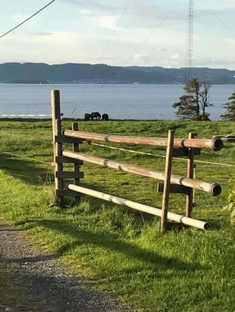 Мосс, Норвегия: photo5.jpg