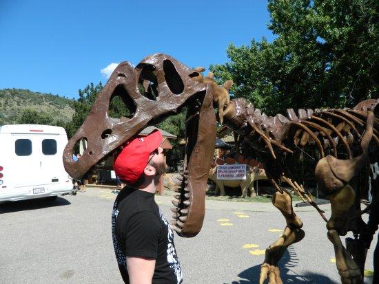 Dinosaur Ridge : Park greeter