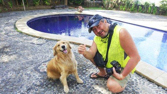 Μανγκίς, Ινδονησία: Simple the resident dog