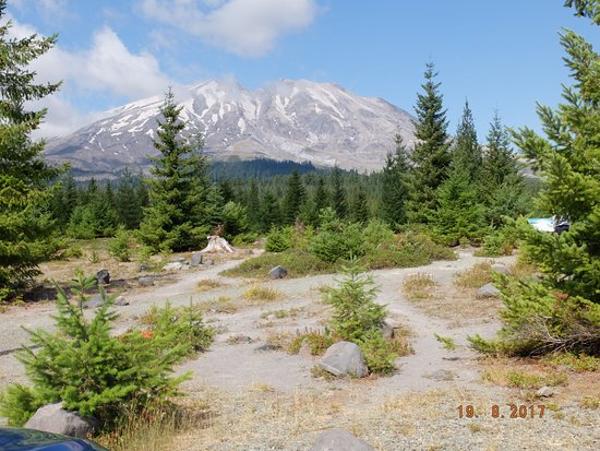 Amboy, WA: Bei dem Ausbruch herausgeschleudertes Gestein und eine sich erholende Natur