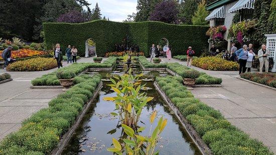 The Butchart Gardens: IMG_20170922_164738_large.jpg