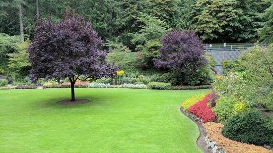 The Butchart Gardens: IMG_20170922_154514_large.jpg