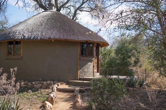 Timbavati Private Nature Reserve Picture