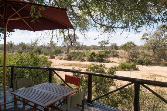 Timbavati Private Nature Reserve, South Africa: Bar area over-looking river bed. Lunch served here