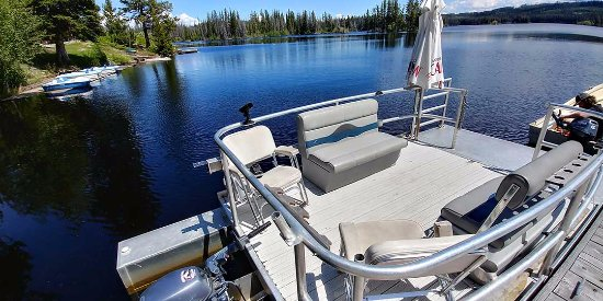 Pontoon boat for hire picture of oyama lake fishing for Fishing pontoon boat reviews