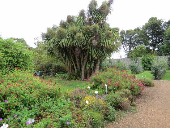 County Dublin, Ireland: Garden